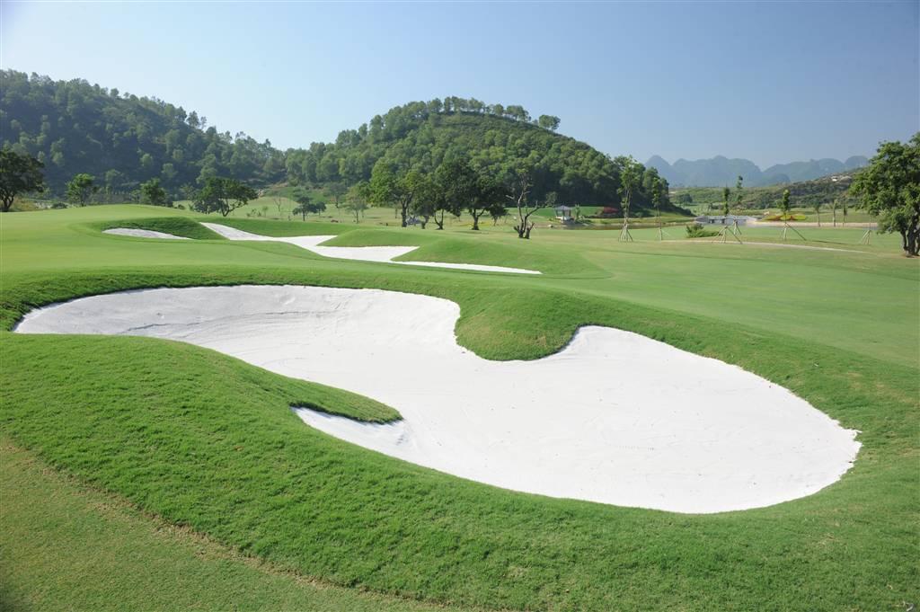 Cát sân golf
