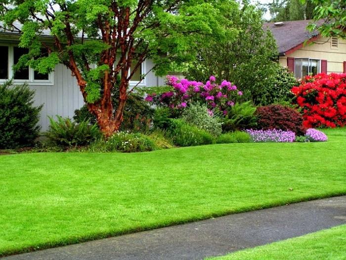 Những ứng dụng của cỏ nhân tạo trong đời sống