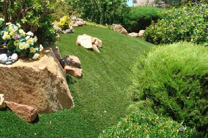 Các kỹ thuật trong bảo dưỡng cỏ nhân tạo