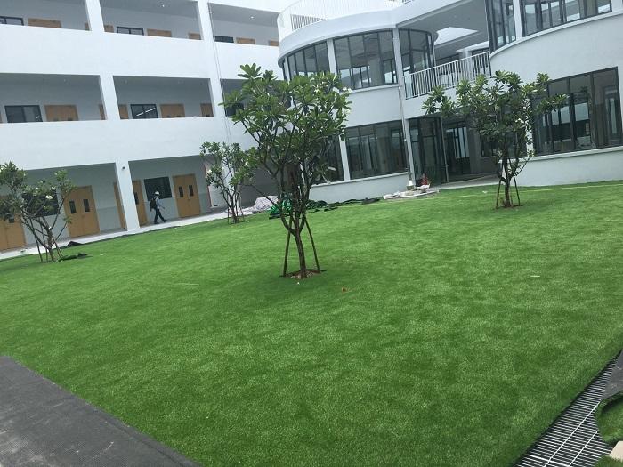 Những tiêu chuẩn lựa chọn cỏ nhân tạo chất lượng