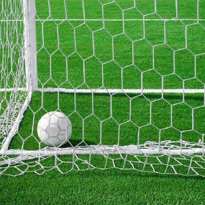 Lưới chắn bóng ở cầu môn
