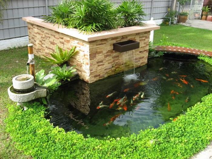 Hệ thống lọc nước hồ cá koi có vai trò gì?