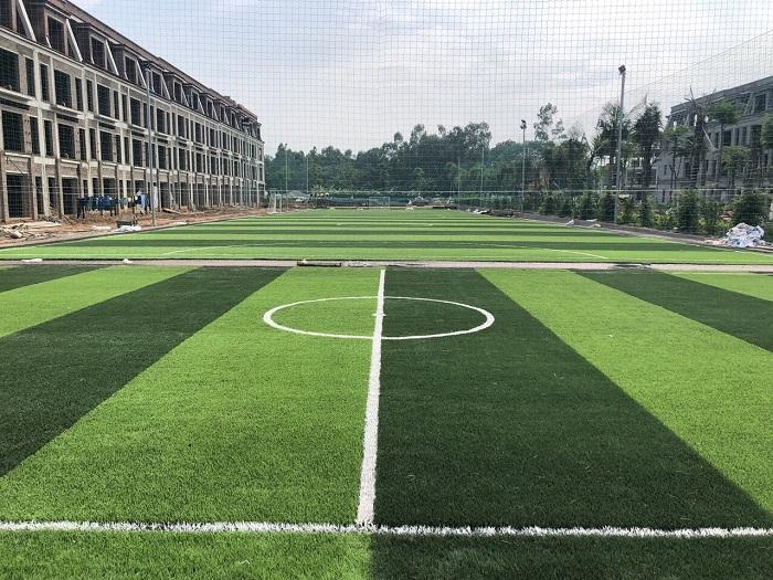Làm sân cỏ nhân tạo 7 người giá tốt nhất thành phố Hồ Chí Minh