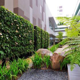 tường cây giả ở Bình Thuận