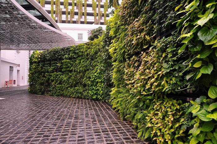 Tường cây giả mang tới không gian xanh cho mọi nơi