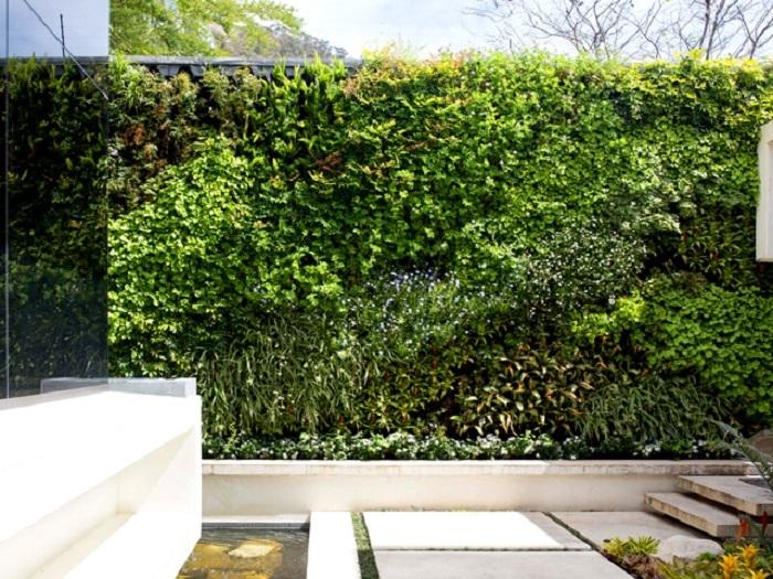 Hoa Thịnh Phát - chuyên thiết kế, thi công tường cây giả
