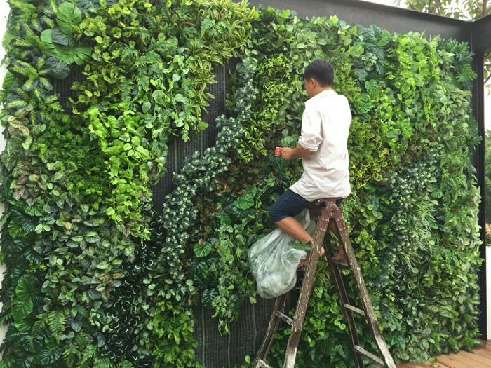 Thi công tường cây giả ở quận 4