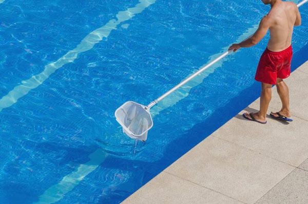 Vợt rác hồ bơi Kripsol